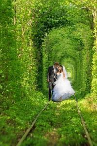 Ideální místo na svatební foto