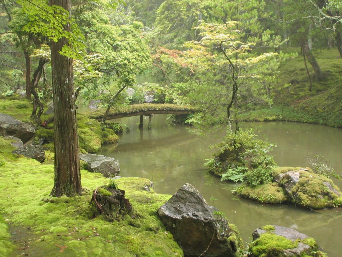 Saihou Ji - Kokedera, Japonsko