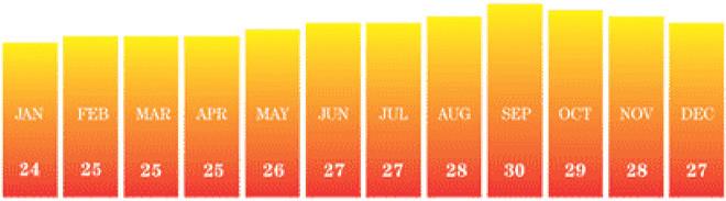 Průměrné teploty po měsících