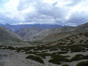 Trekking v okolí