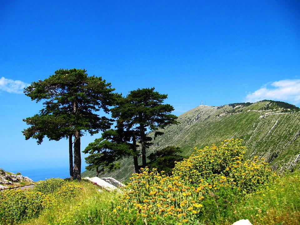 Národní park Llogara