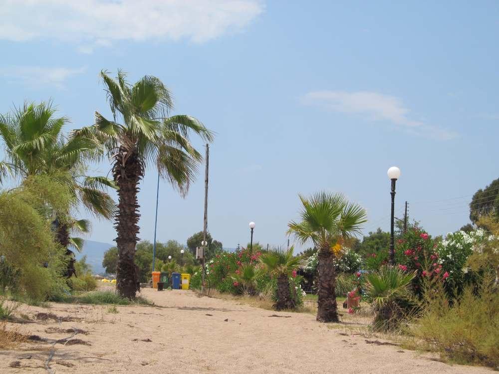 Pláž Buca