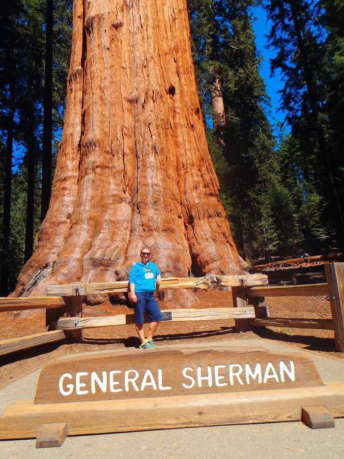 General Sherman, Sequoia