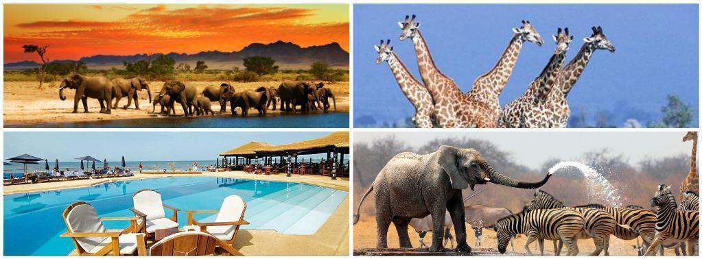 Keňa nabízí především zajímavou přírodu