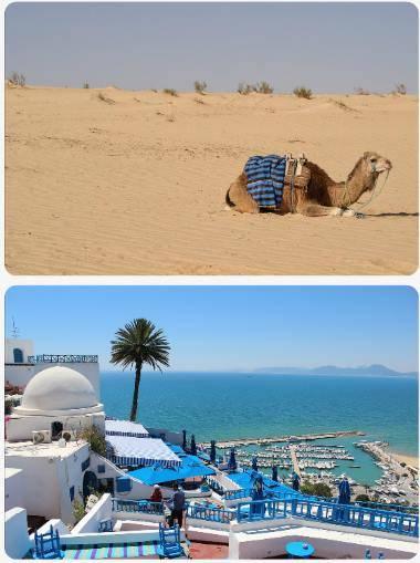 Bezpečnostní situace Tunisko