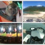 Langkawi - cestopis, opice, jídlo, zábava