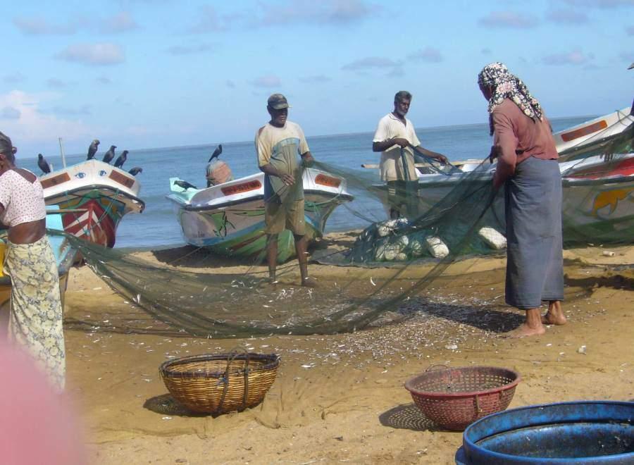 Chytání ryb na Srí Lance