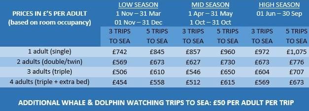 Ceny na Azorských ostrovech ceny delfíní show