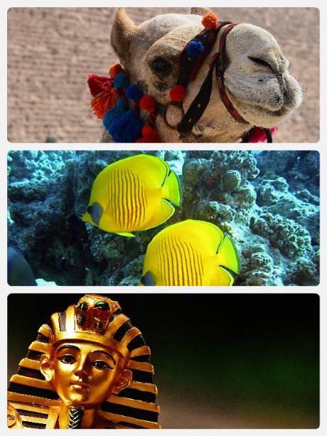 egypt-na-posledni-chvili-zajezdy