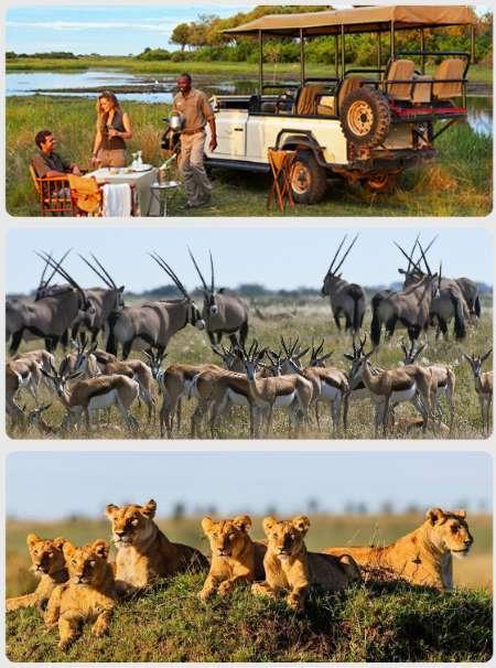 Keňa dovolená Afrika safari