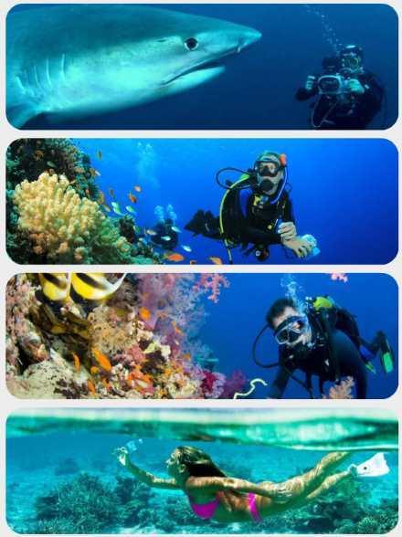 Potápění Maledivy 1