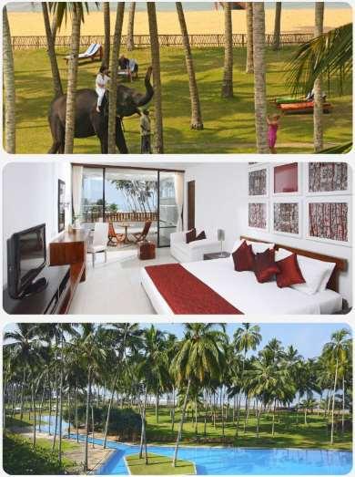 Srí lanka dovolená zájezdy