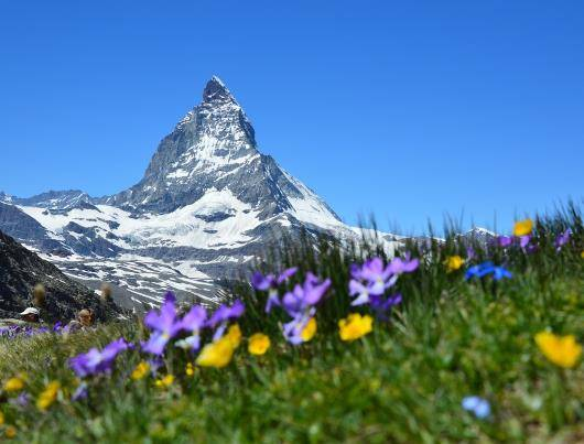 Cestovní doklady do Švýcarska