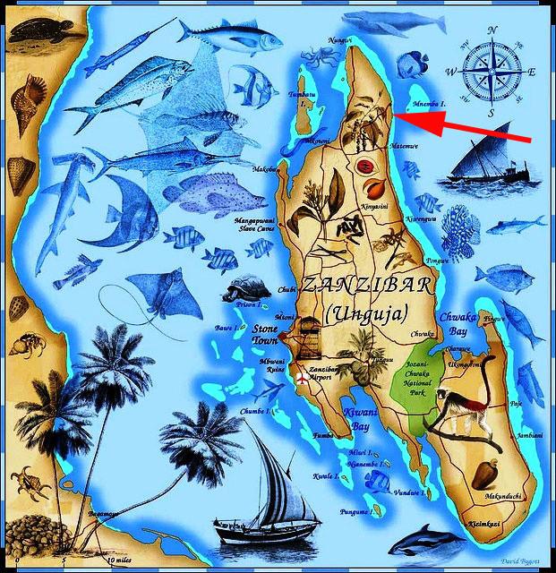 Zanzibar mapa - Kde je Zanzibar na mapě?