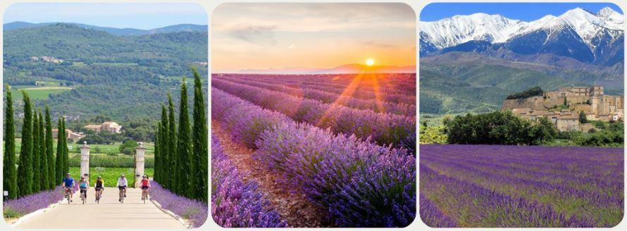 Provence oblast ve Francii