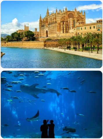Akční dovolená a zájezd na ostrově Mallorca Španělsko