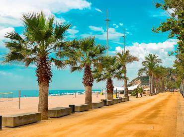 Španělsko a pobřeží s palmami a pláží